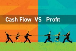 Who wins? Cash Flow...or Profit?