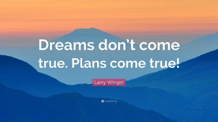 Dreams don't come true plans come true Quote by Larry Winget